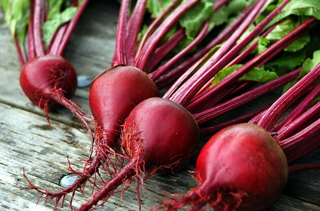 growing beets in shade