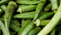 How to Grow Okra From Seeds