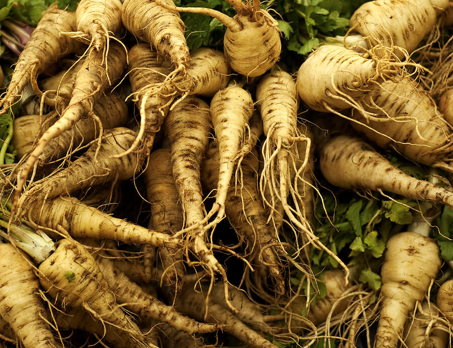 parsnip roots