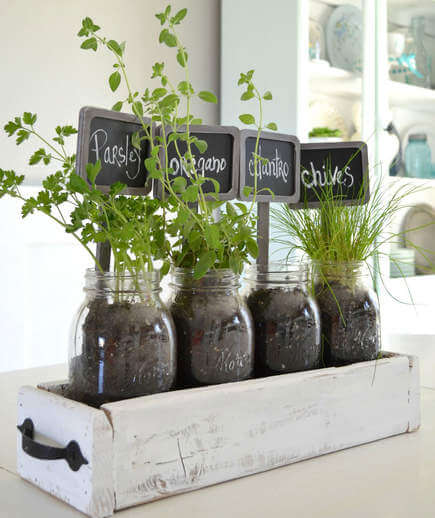 Cheap Gardening Ideas: 10 Indoor Garden Ideas That Are Cheap And Easy