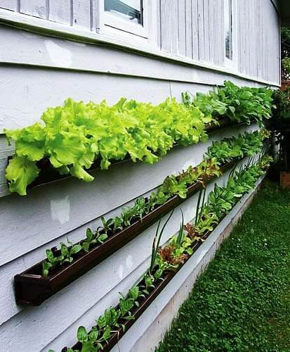space saving garden