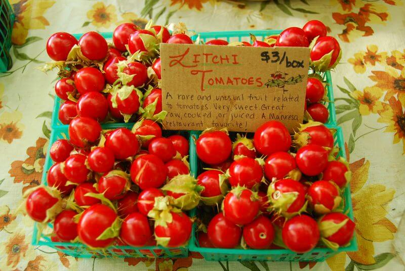How to Grow Litchi Tomatoes