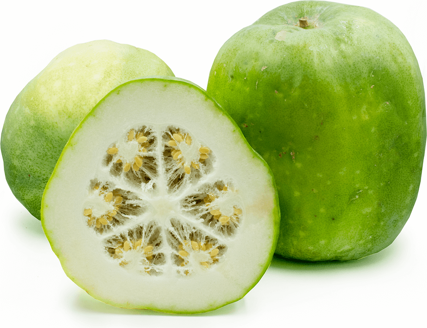 insides of winter melon