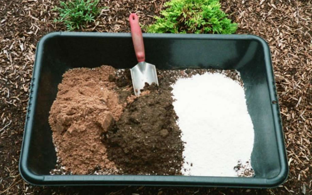 How to Make Potting Soil: DIY Potting Soil