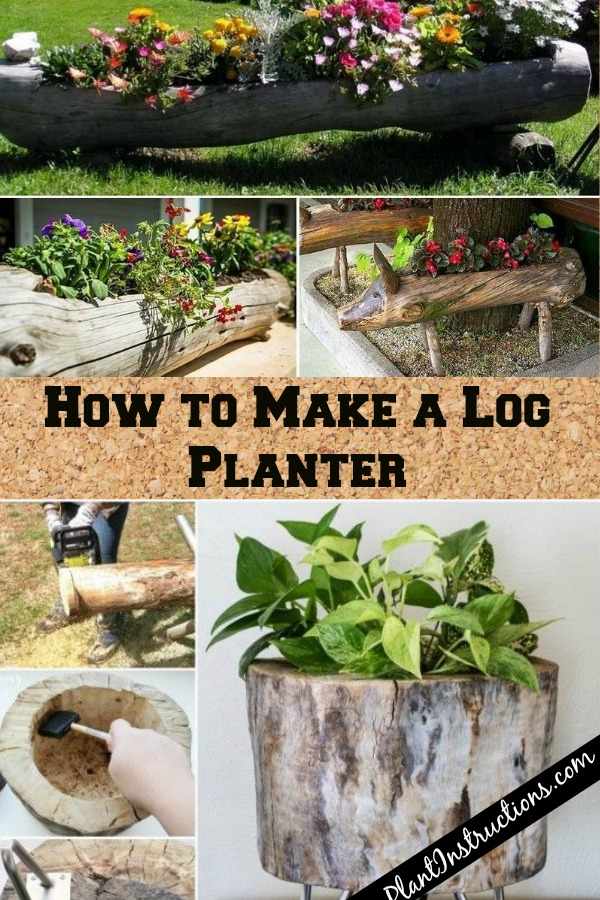 How to Make a Log Planter