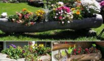 DIY Log Planter: How to Make a Log Planter