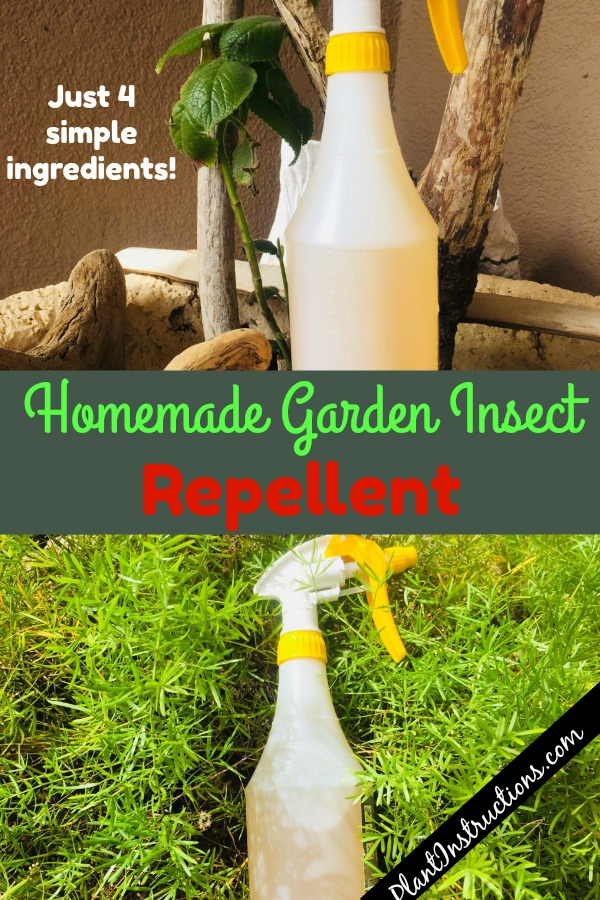 Homemade Garden Insect Repellent