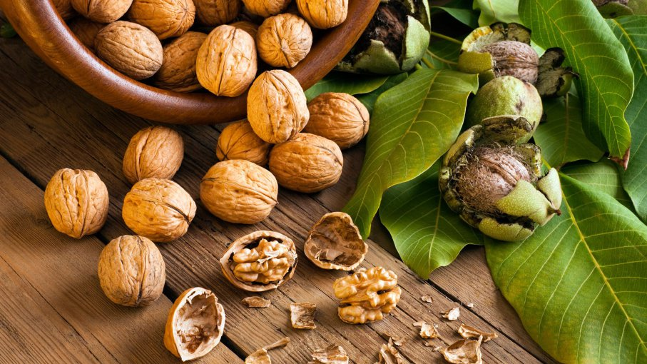 How to Grow Walnut Trees