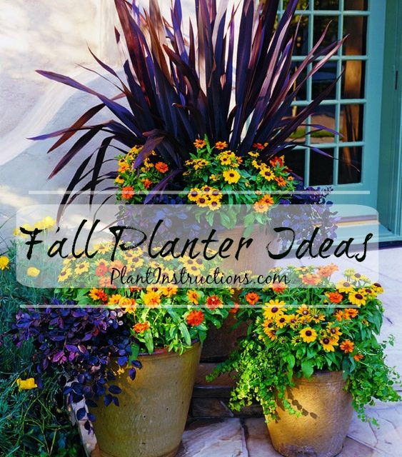 13 Fall Container Ideas You Need to Copy ASAP
