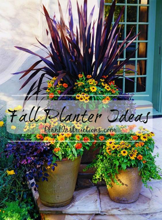 Fall Container Ideas