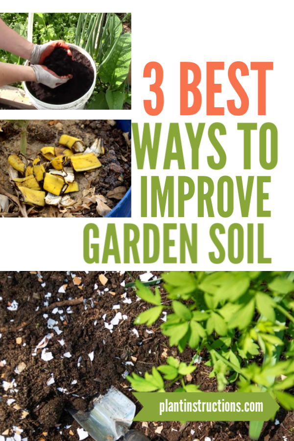 This article will show you how you can quickly and cheaply improve garden soil just by using all natural food scraps that you would normally throw in the trash! #improvegardensoil #gardening #plantinstructions